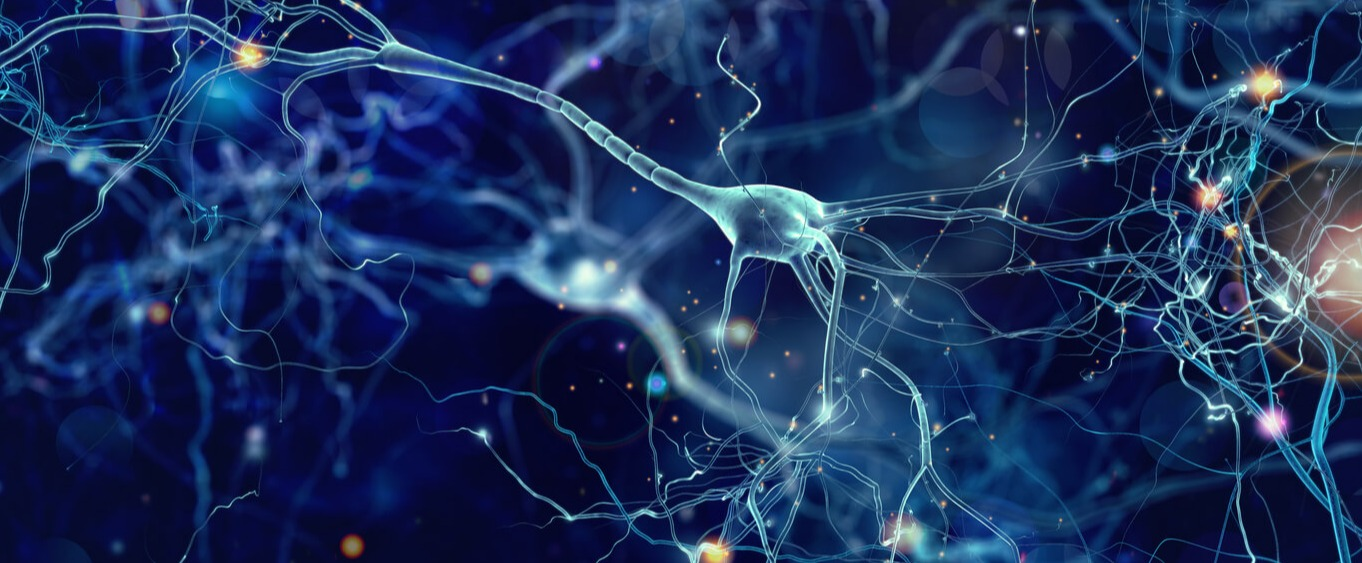 alzheimers-research-neurons