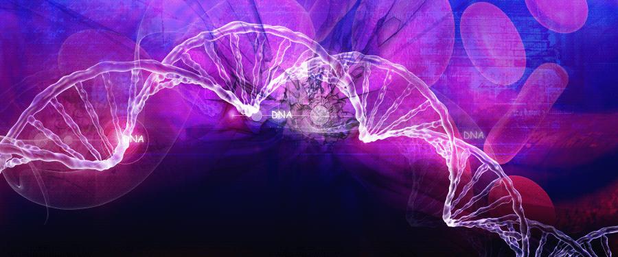 Alzheimer's Research News Round-Up