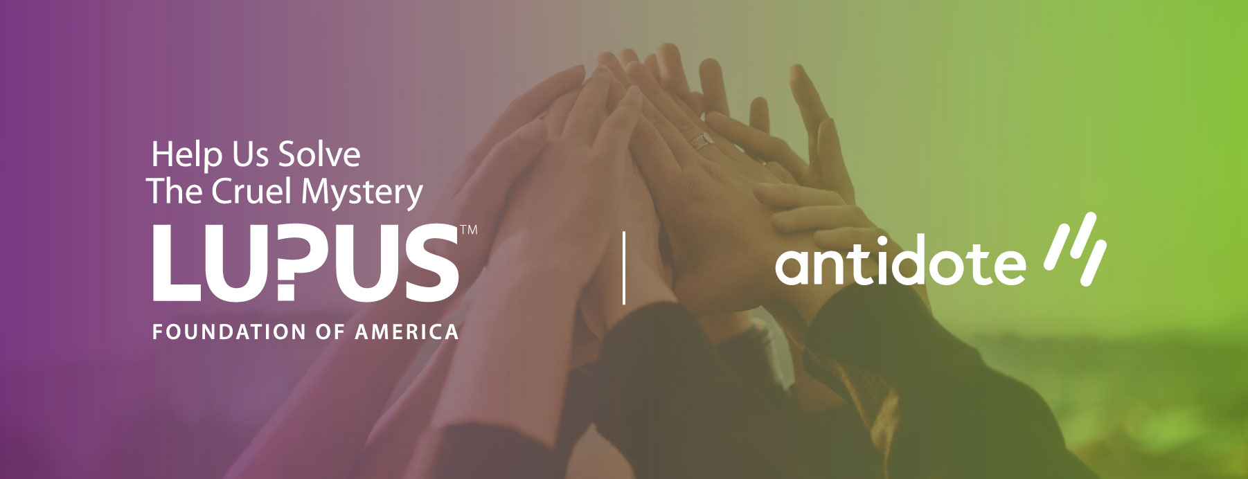 Announcing Our Newest Partner: the Lupus Foundation of America